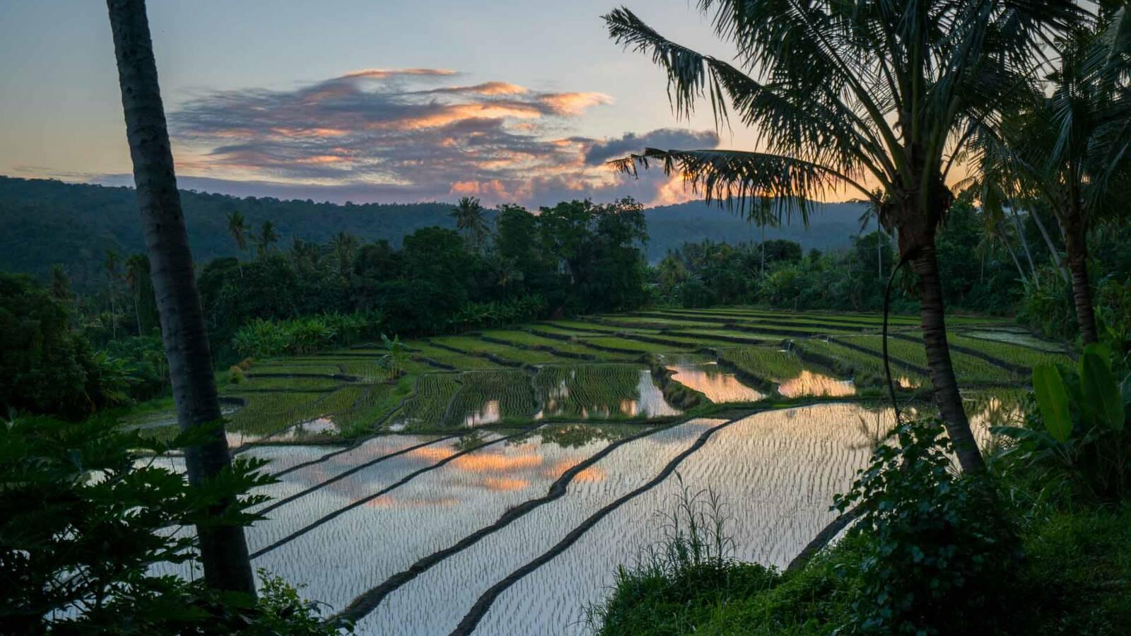 Amankila Bali Riziere Amanresorts