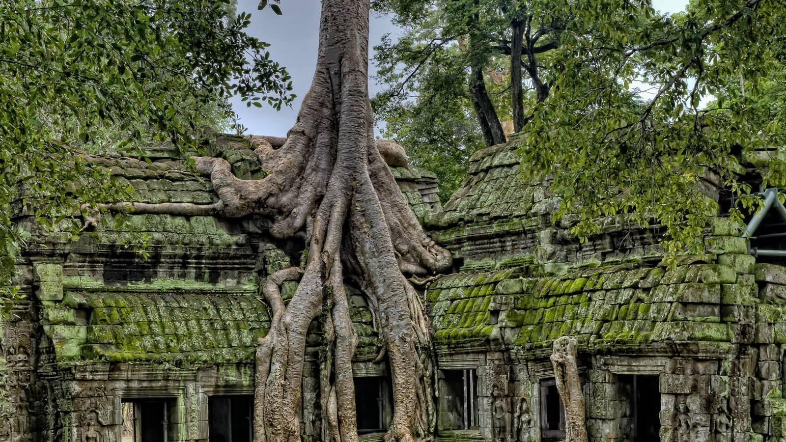 Cambodge Angkor james wheeler