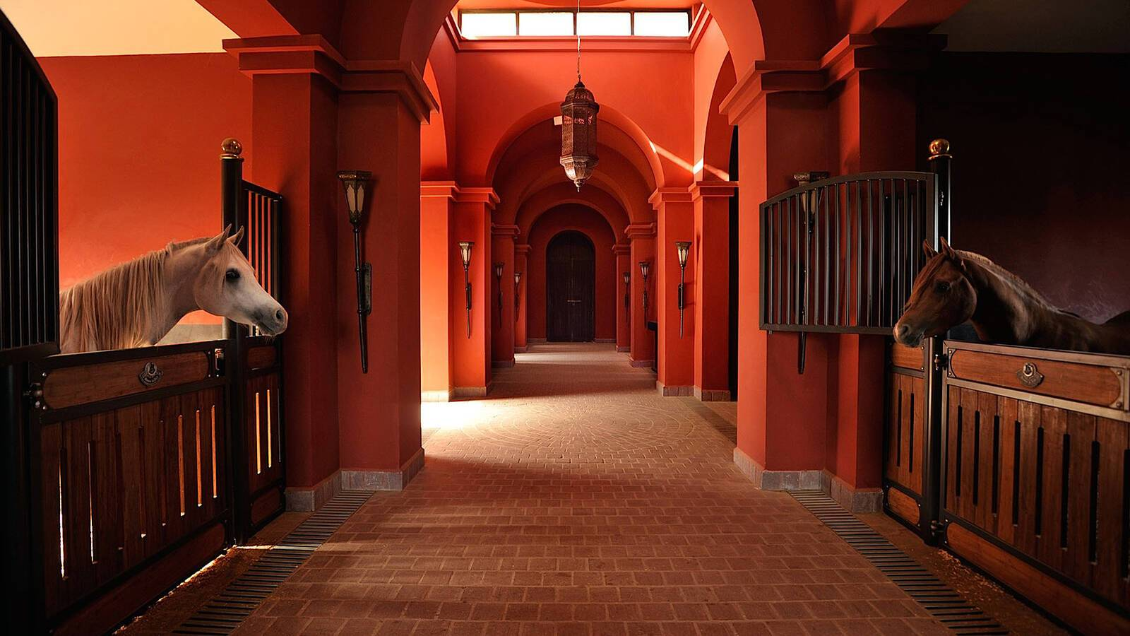 Selman Ecuries Marrakech Maroc