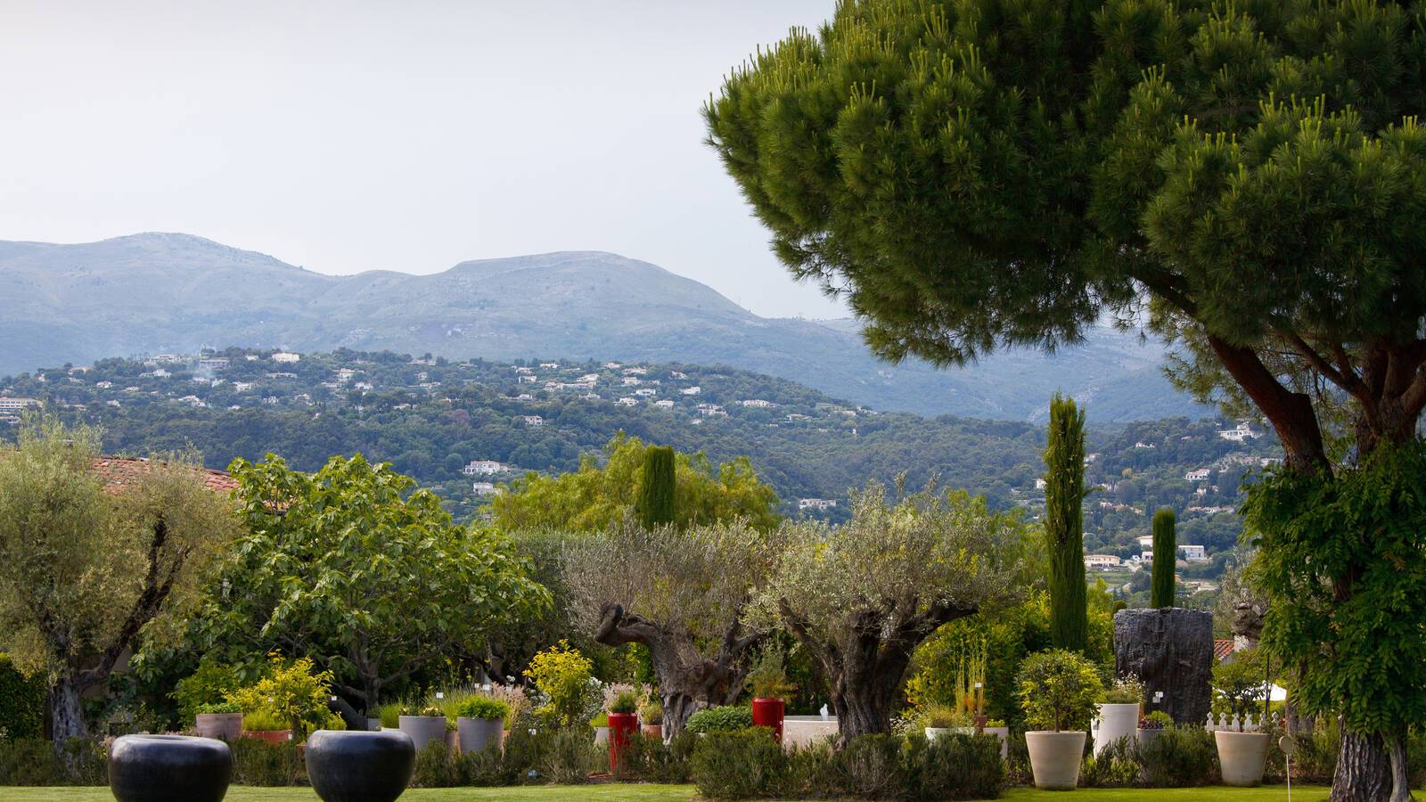Mas De Pierre Exterieur Provence.JPG