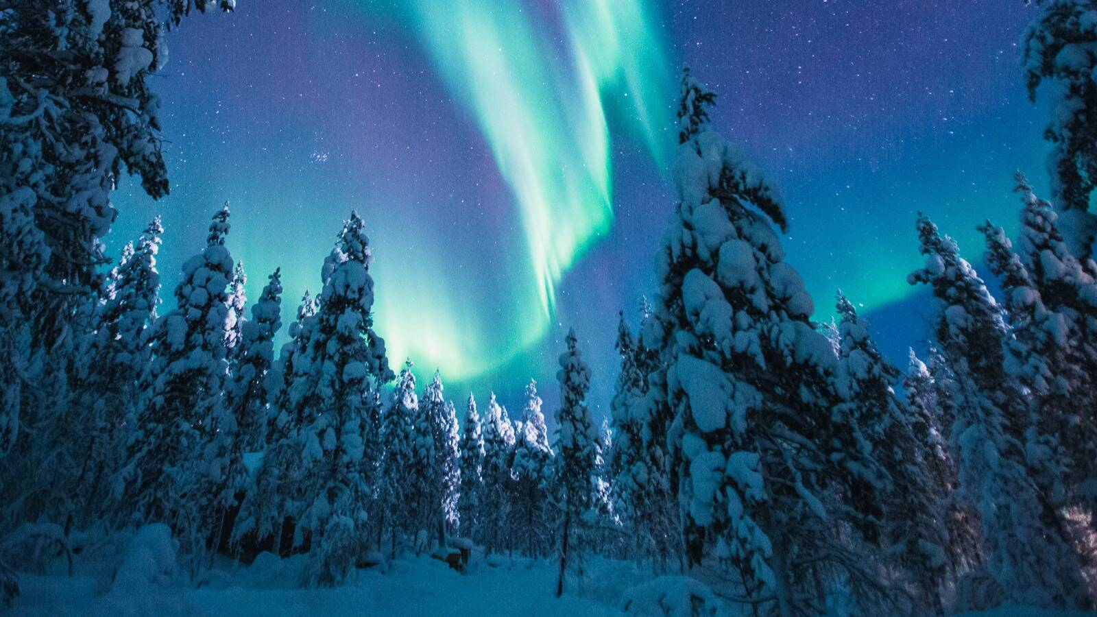 Kakslauttanen aurores boreales Laponie