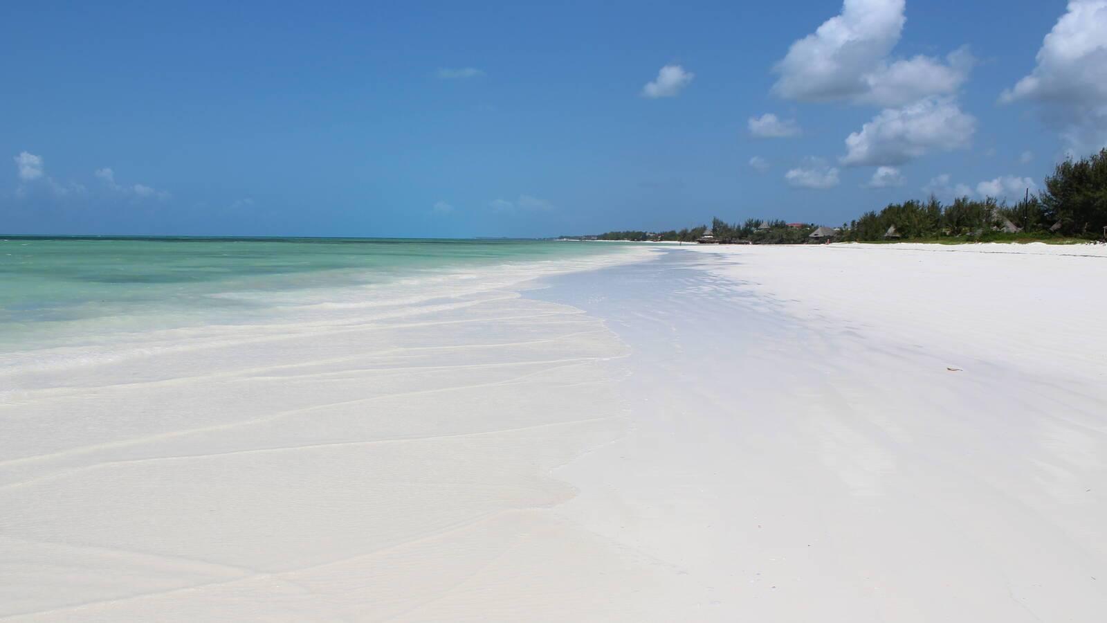 White Sand Zanzibar Plage.JPG