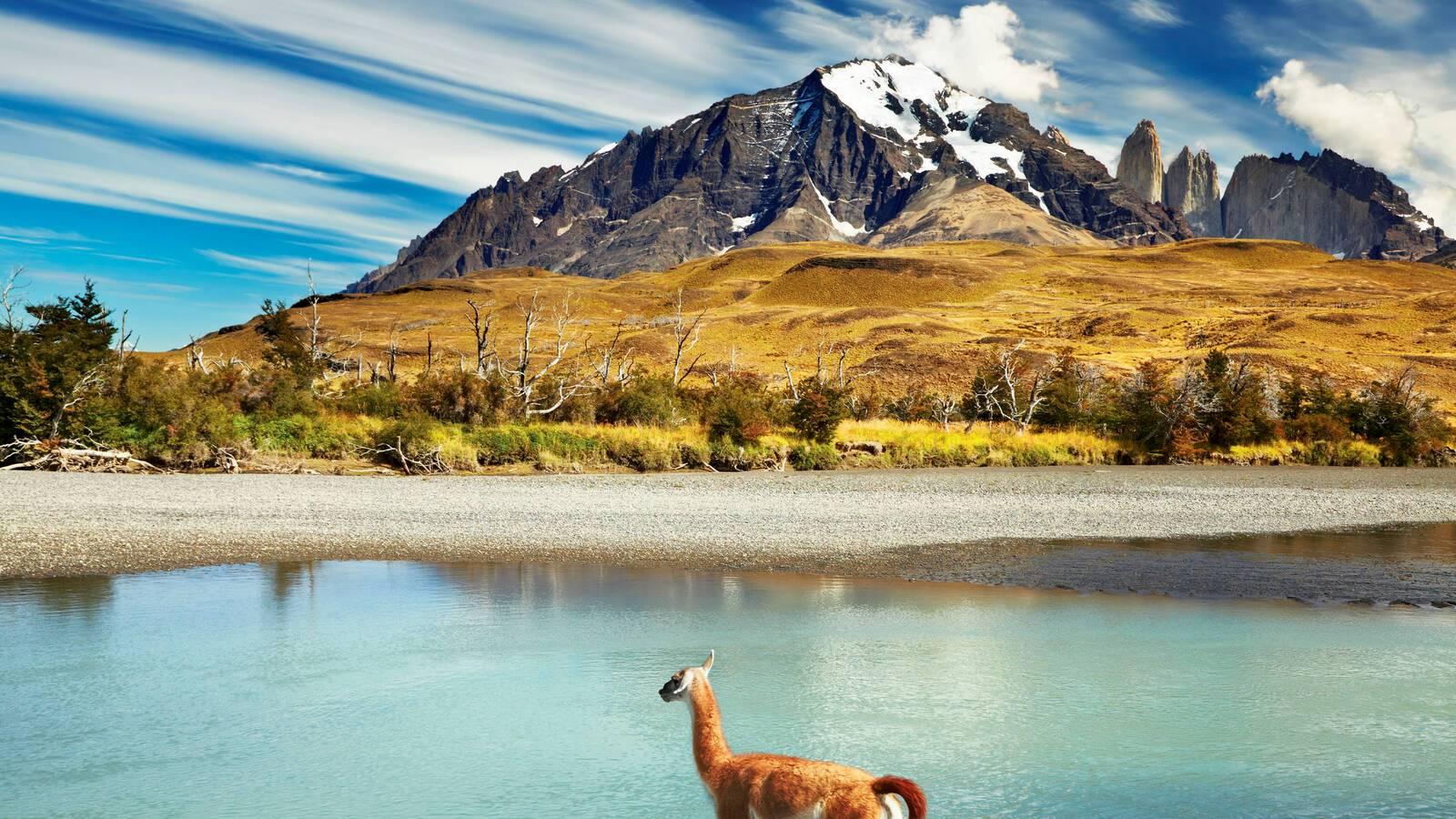 Circuit Chili Patagonie Parc Torres Paine