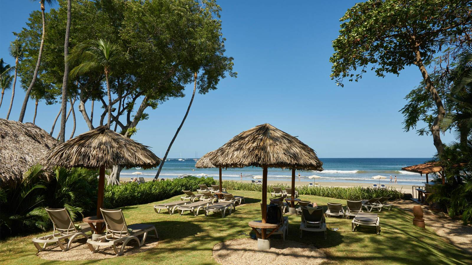 jardin del eden tamarindo beach