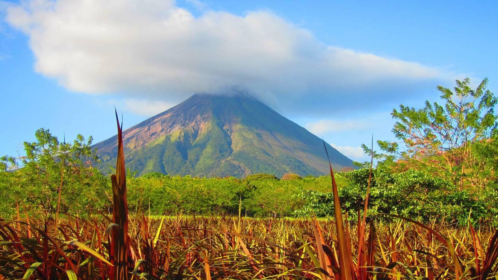 Nicaragua FincaSanJuanIsla