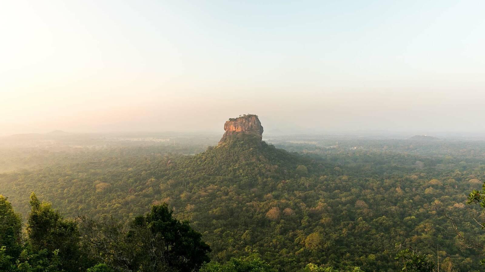 Sri Lanka Sigirya egle sidaraviciute