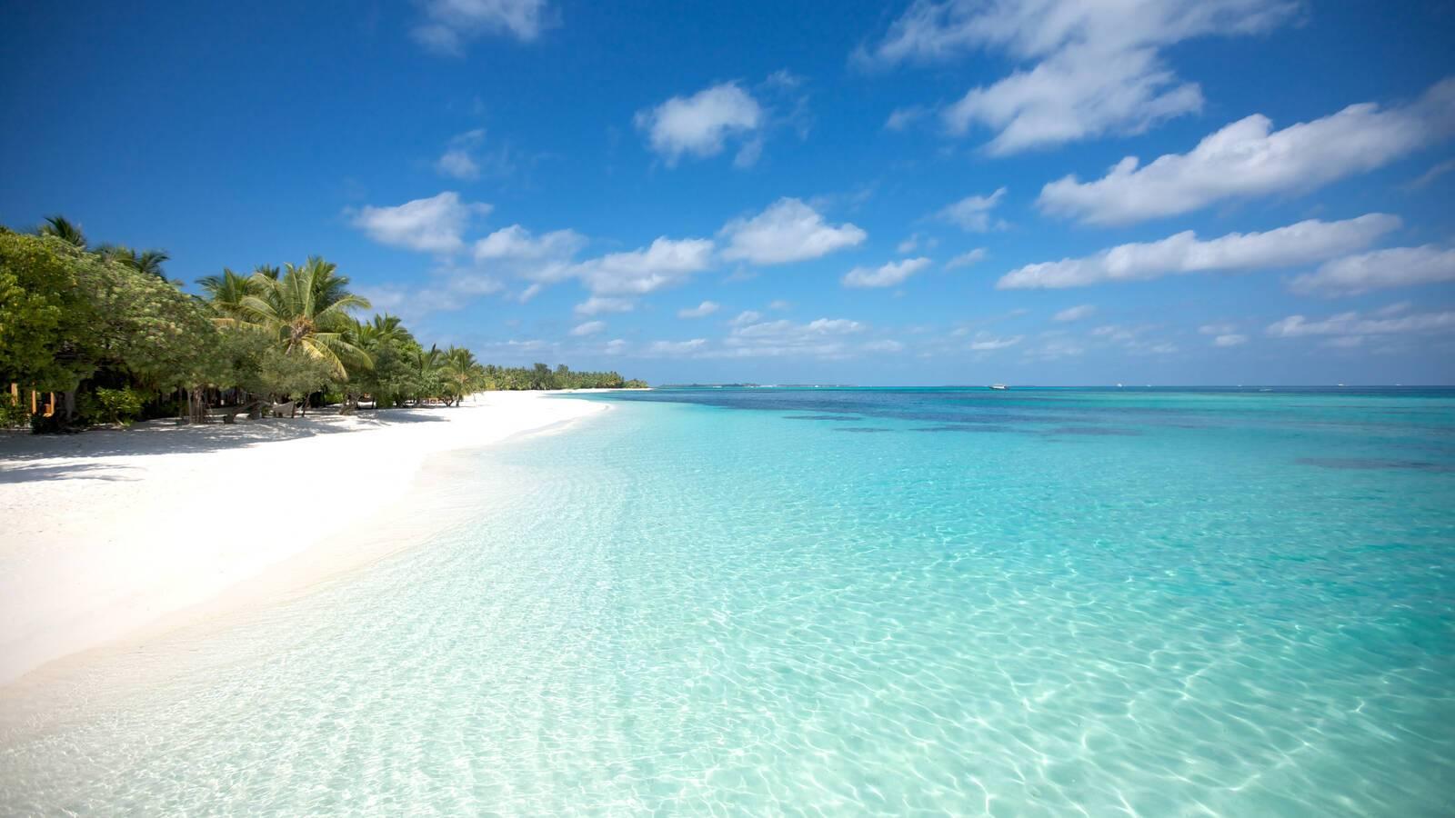 Lux South Ari Atoll Plage Maldives