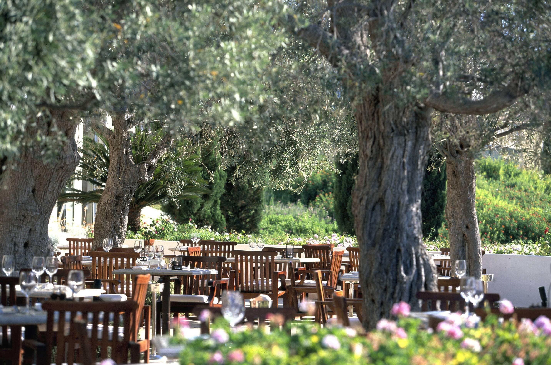 Anassa Restaurant Ampora Chypre