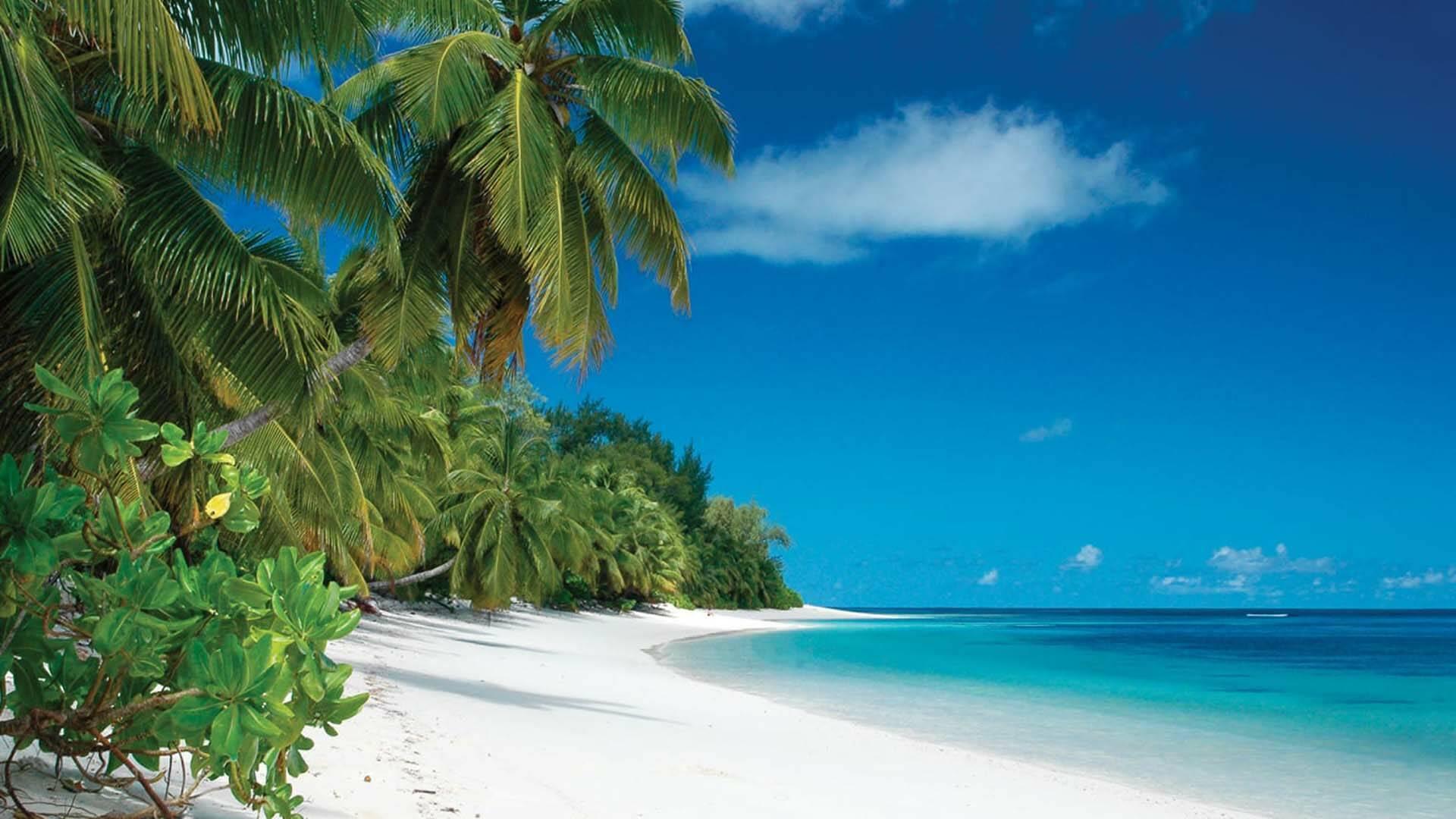 Four Seasons Desroches plage