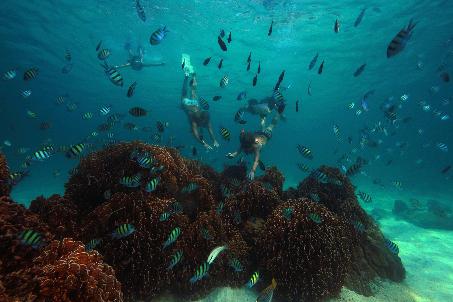 Soneva Kiri Thailande Snorkelling