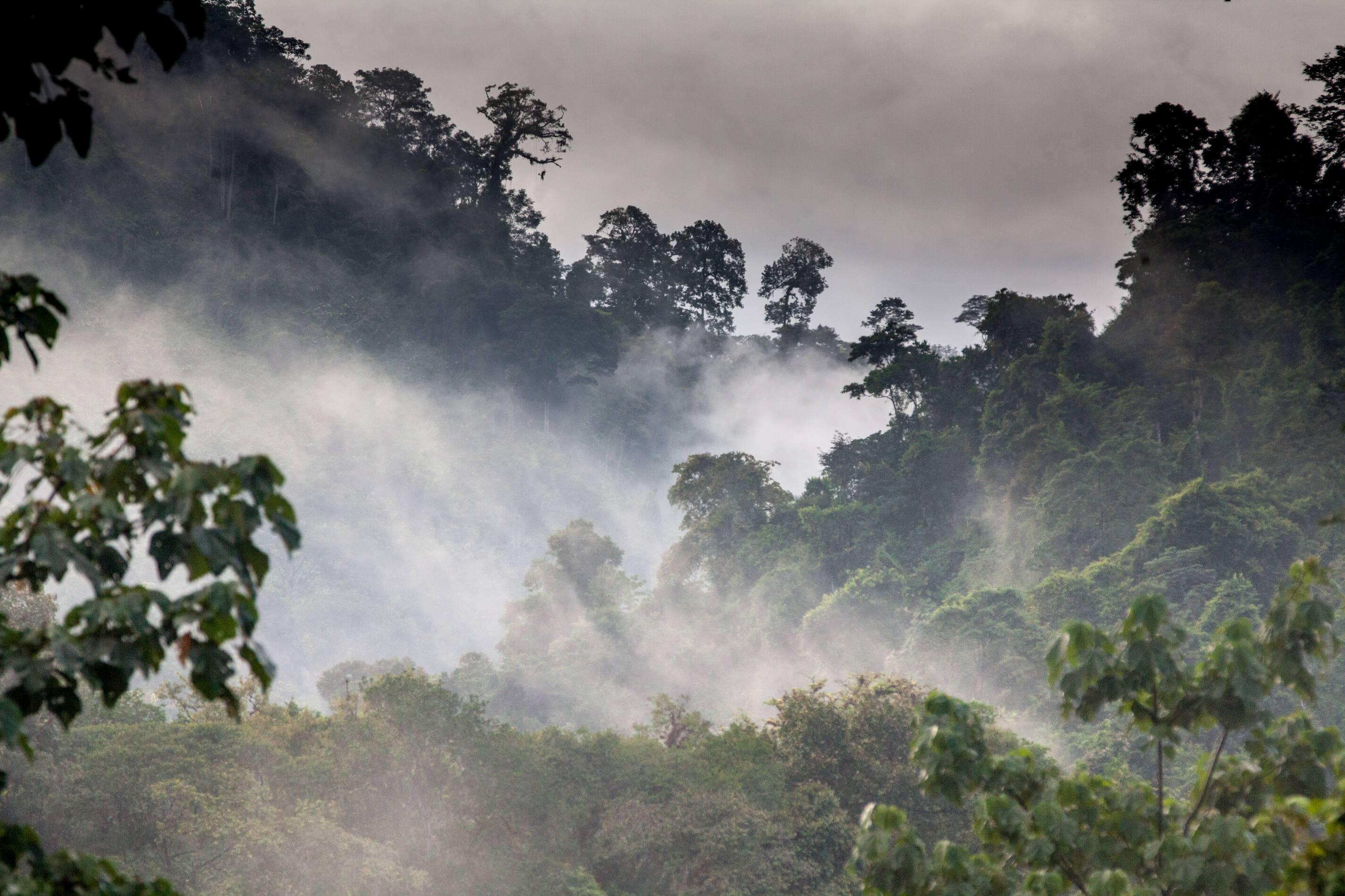 Monteverde Costa Rica Rafiki Safari Lodge Montagnes