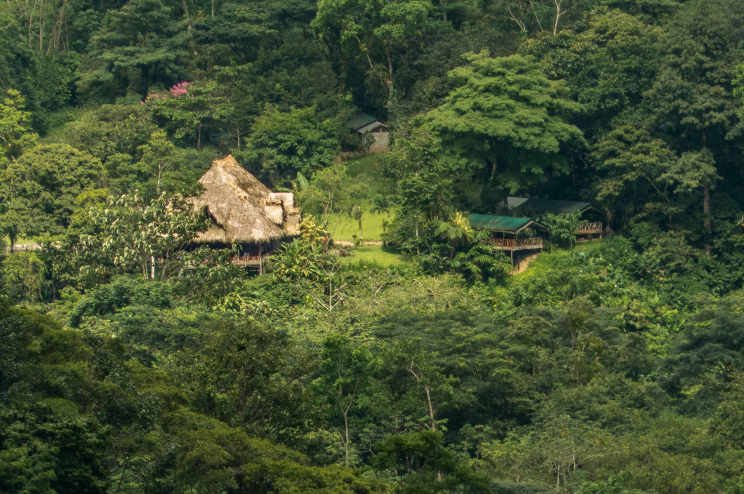 Monteverde Costa Rica Rafiki Safari Lodge Village