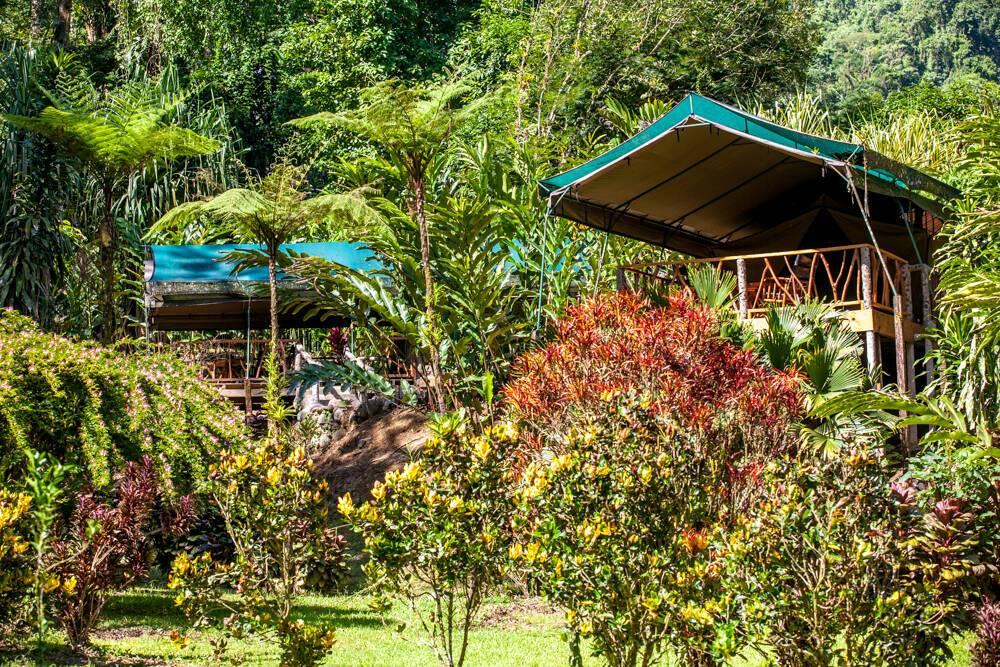 Monteverde Costa Rica Rafiki Safari Lodge