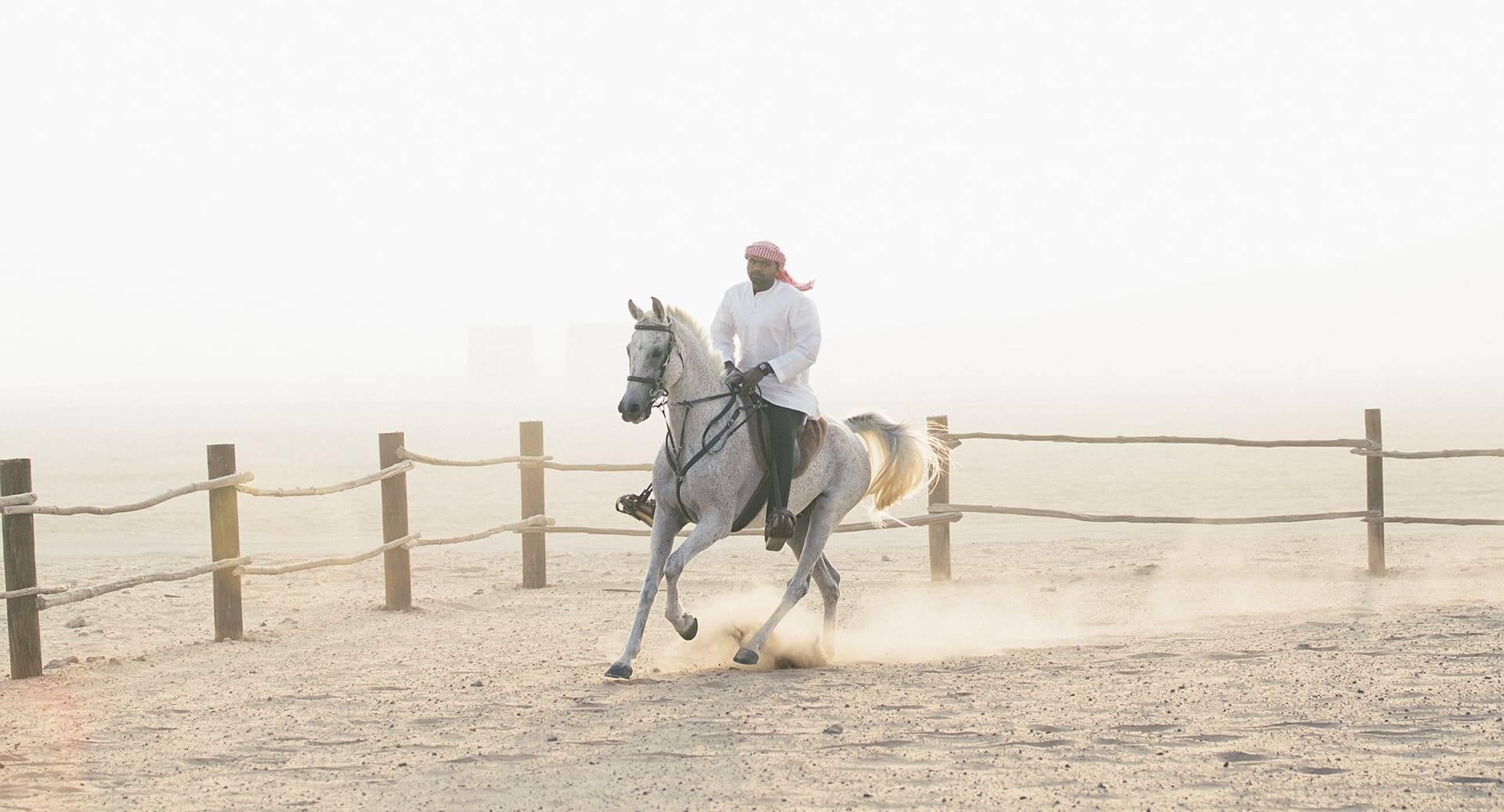 Abu Dhabi Anantara Qasr al Sarab Desert Chevaux