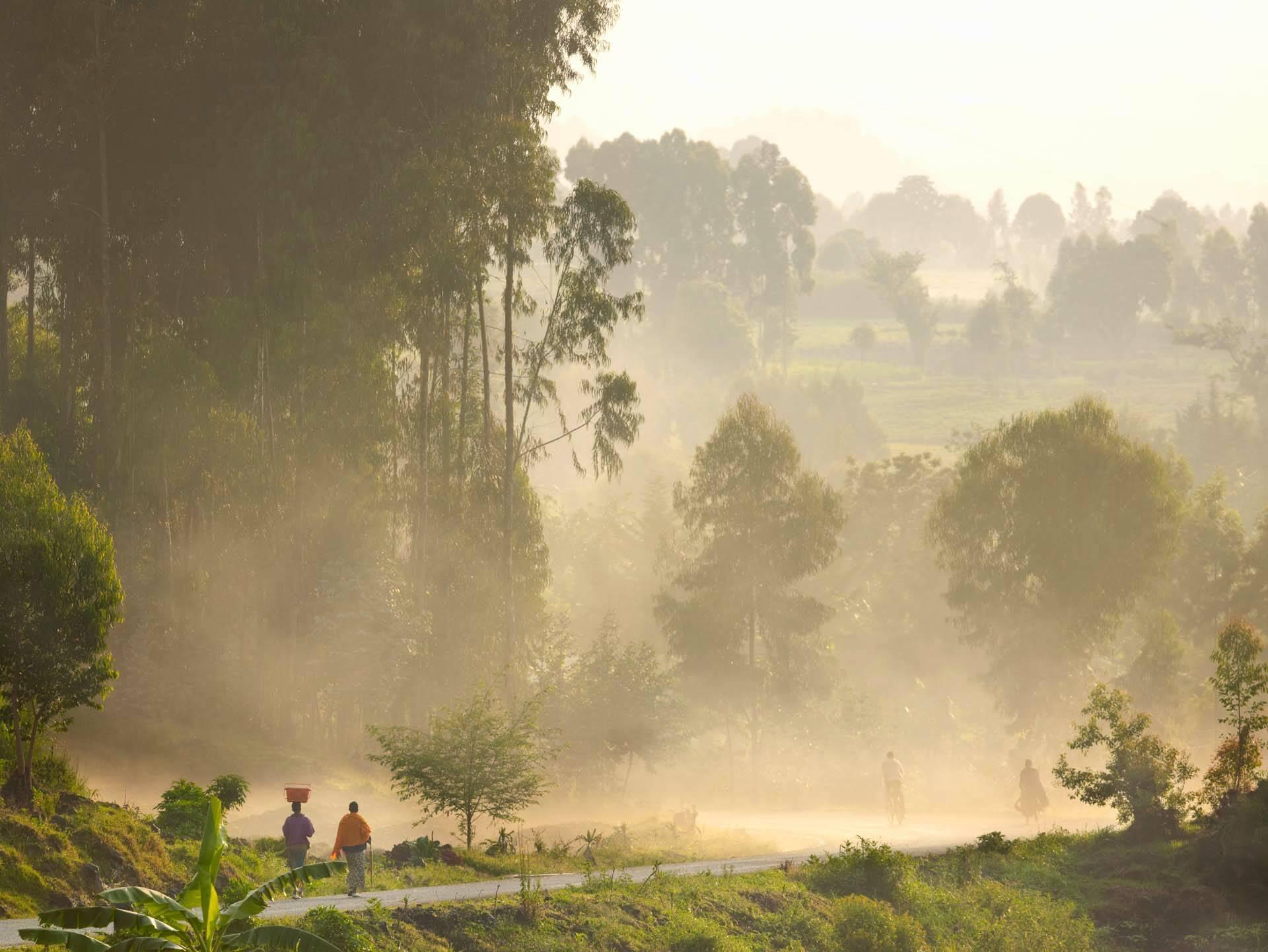 Rwanda OneandOnly NyungweHouse Foret
