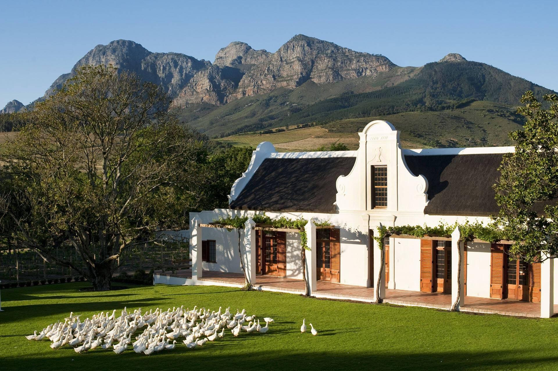 Afrique Sud Babylonstoren