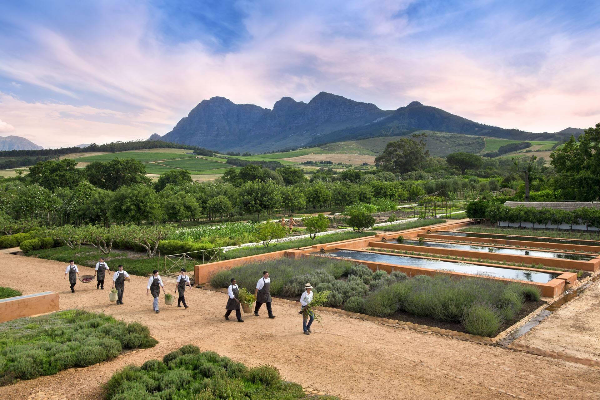 Afrique Sud Babylonstoren Cuisiniers