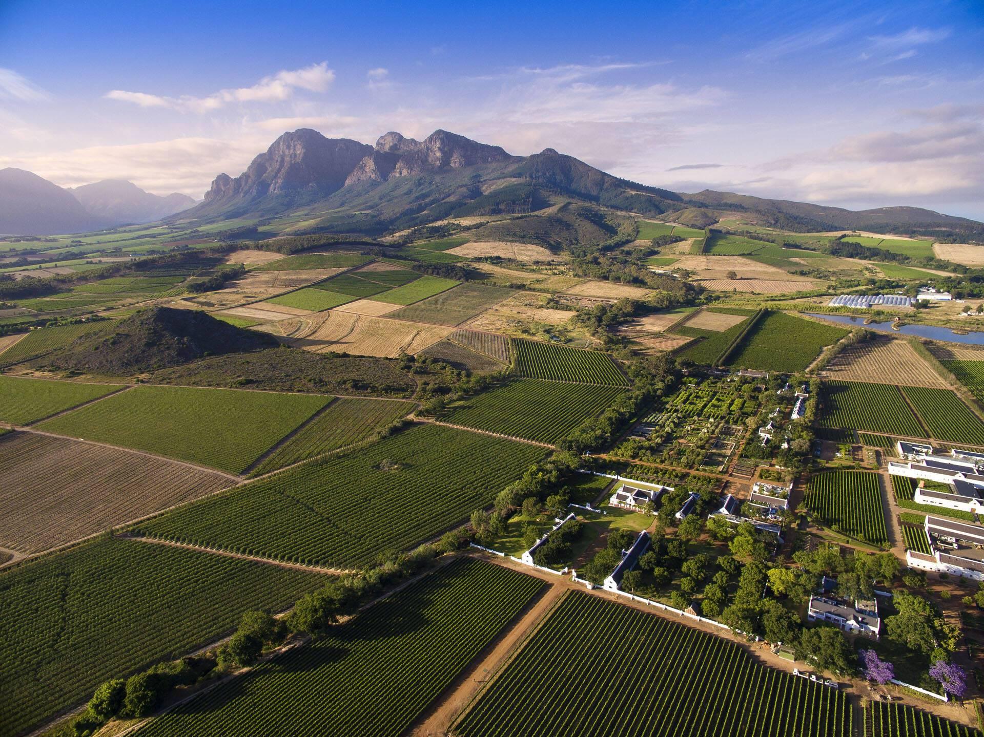 Afrique Sud Babylonstoren Simonsberg