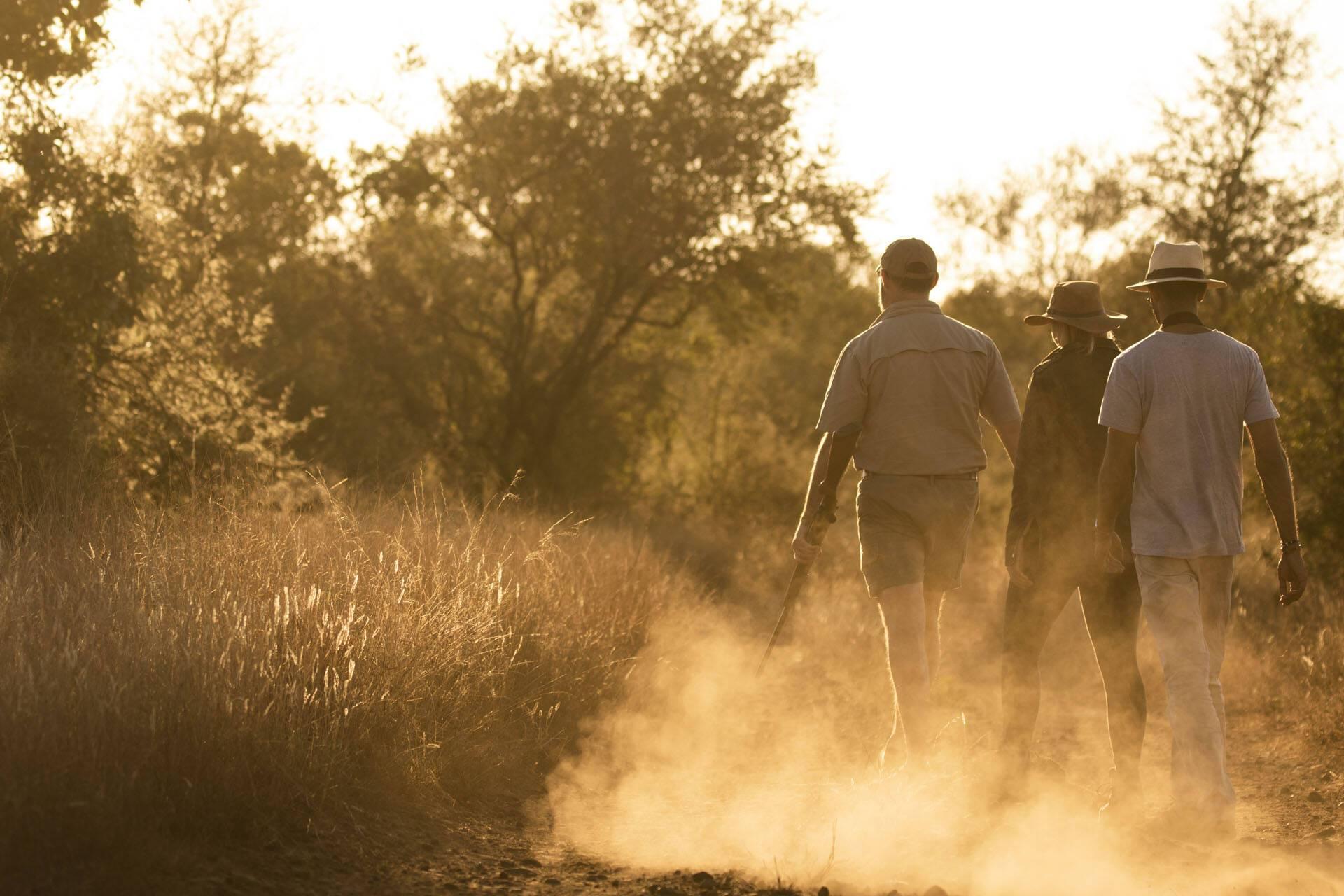 Singita Lebombo Parc Kruger Afrique Sud Bush Balade