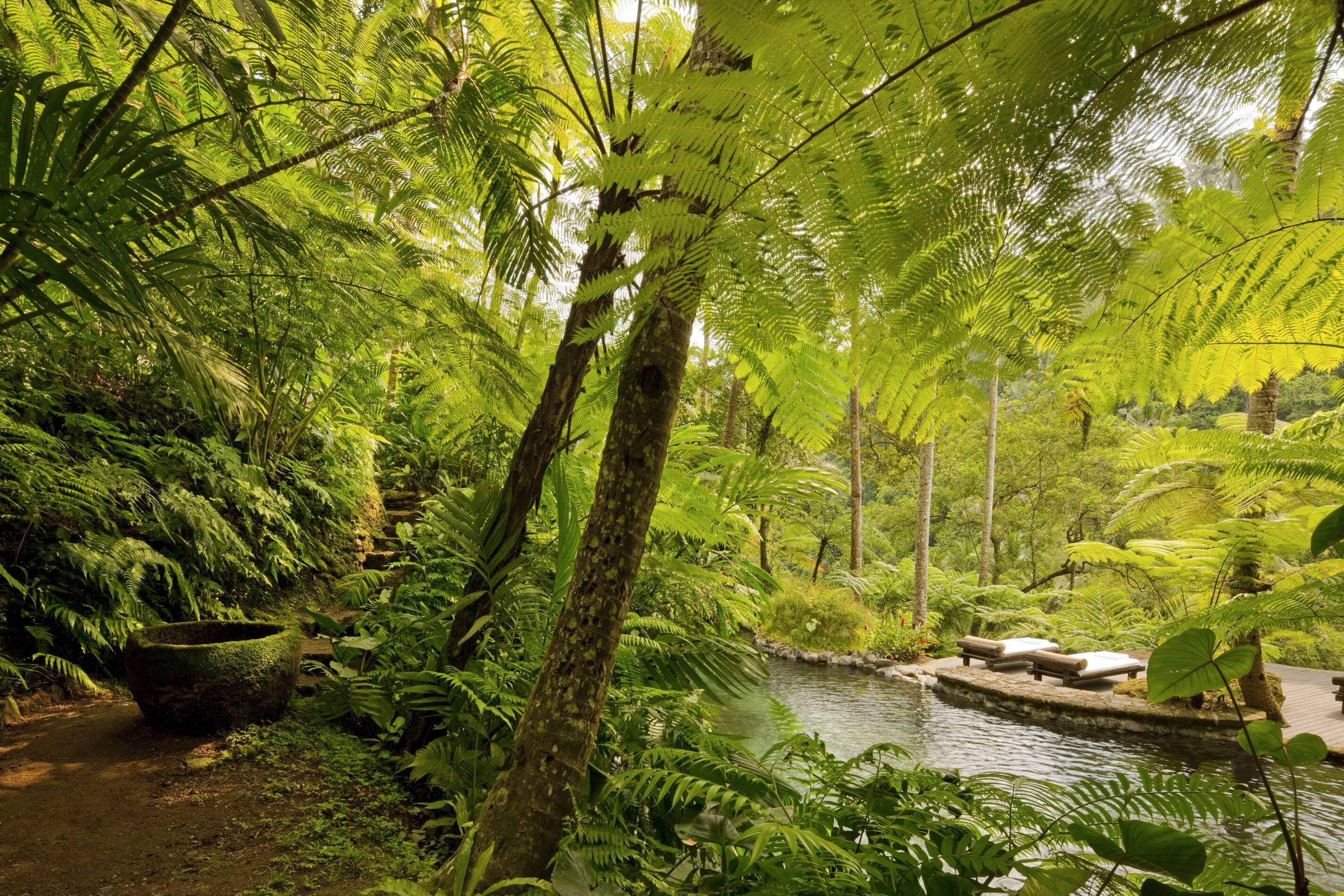 Como Shambhala Bali Jardin Kedara