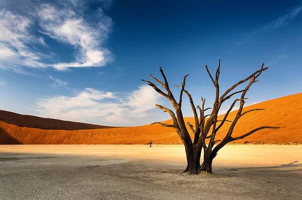 Nature XXL - Namibie, les plus beaux déserts