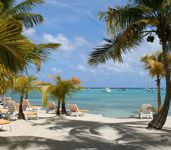 La Cocoteraie Plage Guadeloupe
