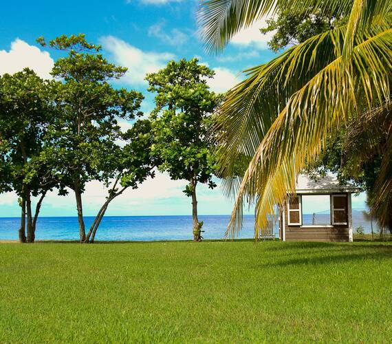 Montpelier Plantation Plage Nevis